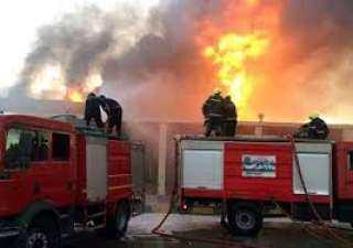 عميد زراعة القاهرة: السيطرة على حريق في محطة التجارب الزراعية بدون خسائر