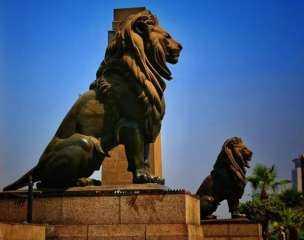 """حكايات مثيرة حول أسود  """"قصر النيل"""" .. وقصة """" شنبهم"""" الذى تسبب فى انتحار صانعهم"""
