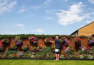 على طريقة لعبة المزرعة السعيدة..رجل مسن يحول منزله لحديقة أزهار مذهلة