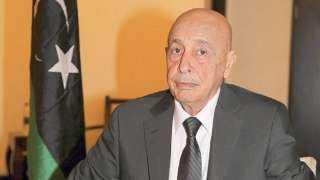 تفاصيل لقاء عقيلة صالح والسفير الأمريكي لدى ليبيا بالقاهرة