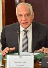 محافظة الجيزة: فتح باب التقدم لتقنين أراضى أملاك الدولة
