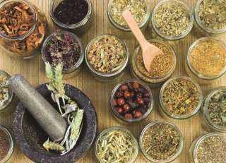 عاجل..منظمة  الصحة العالمية تلجأ للأعشاب الأفريقية للخلاص من كورونا