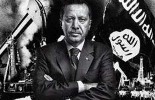 باعتراف وزير داخليته.. أردوغان يرعي 2000 جماعة سلفية تعتنق فكر داعش