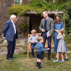 ما هي حكاية صور الأمير ويليام وزوجته كيت ميدلتون مع السير ديفيد آتينبارا؟.. قصر كينجستون يجيب