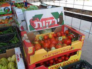 استقرار أسعار الخضراوات .. والطماطم يسجل 3 جنيهات