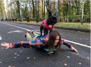 عضو فى فرقة موسيقية ويمارس رياضة التزلج.. حكاية أشهر كلب في العالم