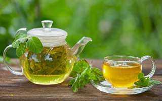الشاي الأخضر الساخن.. الحل المثالي للتخلص من آلام التهاب المفاصل الروماتيزمي