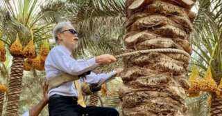 بعد تسلقه نخلة في البحيرة.. السفير اليابانى بالقاهرة يتصدر تريند السوشيال ميديا