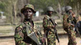 الحكومة الإثيوبية تعلن استسلام عدد من مسلحي تيجراي