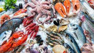 ننشر أسعار الأسماك والجمبرى اليوم الجمعة