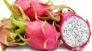 فاكهة التنين.. اسم علي مسمي تمنحك القوة والرشاقة وتحمي من 12 مرض