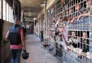 فضيحة..أكثر من 800 طفل ورضيع يقبعون في سجون أردوغان