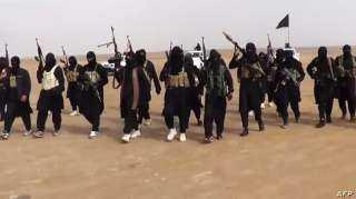 قوات الحشد الشعبي تدمر موقعا لداعش جنوب العراق