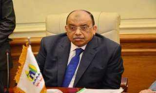 وزيرا التنمية المحلية والزراعة يبحثان  تطوير 150 مجزرا بتكلفة 1.6 مليار جنيه