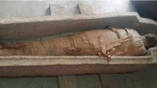 """فكرة مبتكرة.. سر """"الكبسولة """" التي تحمي """"المومياوات الفرعونية """" أثناء نقلها إلي متحف الحضارات"""