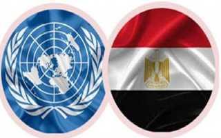 حذرت من التعامل معه.. الأمم المتحدة تكشف  خدعة السفير المزيف في مصر