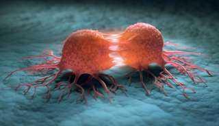 اكتشاف عقار للسرطان مستخلص من لقاح كورونا