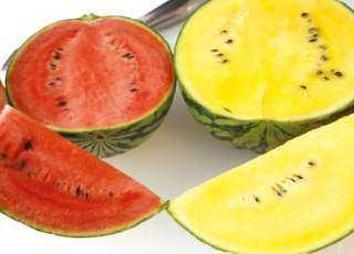 عاجل.. أول رد من الحكومة علي انتشار البطيخ المسموم