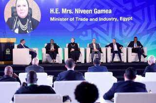 وزيرة التجارة والصناعة: حريصون على تقديم الخبرة المصرية للأشقاء الافارقة  في مجالات إقامة المناطق والمجمعات الصناعية