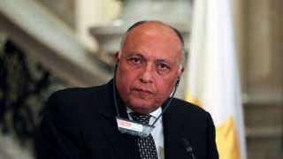 عاجل.. نص شكوي مصر ضد أثيوبيا في مجلس الأمن