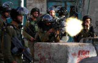الجيش الإسرائيلي يطلق النار على سيدة فلسطينية..ما السبب؟