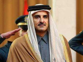 قرار عاجل من أمير قطر بشأن حرائق الغابات في تركيا