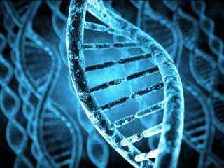ما هي الأمراض التى تكشفهاالاختبارات الجينية؟.. اعرف التفاصيل