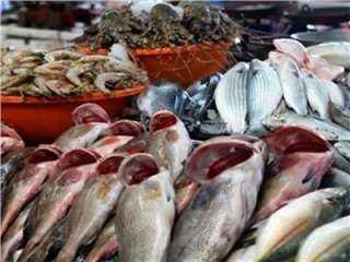 """فى بداية التعاملات .. أسعار """"السمك والجمبري """" مستقرة"""