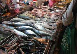 تعرف على أسعار الأسماك فى سوق الجملة بالعبور