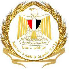 أحمد كمال : التموين أول وزارة تقوم بعقد الندوات التعريفية للتميز الحكومي