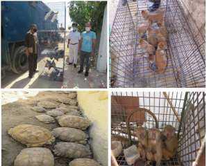شاهد بالصور .. جهود  أجهزة وزارة الداخلية فى مجال حماية البيئة