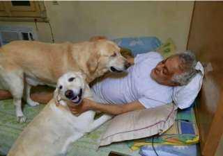 """توفيق عبد الحميد بصحبة كلابه عبر """"فيس بوك"""""""