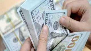 بورصة الأسعار| الدولار يستقر عند  15.64 جنيه للشراء 15.74 للبيع
