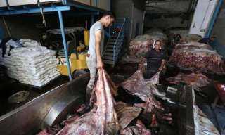 محمد مهران : قرار منع تصديرالجلود يسبب خطرا بيئيا