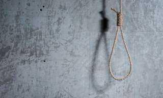 خطير .. قصة الفتاة التى انتحرت شنقا أعلى نخلة فى سوهاج