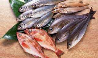 ما هي الأسماك الغنية بـ الأوميجا 3 .. تعرفي عليها